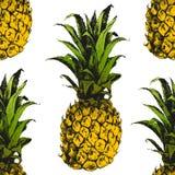 Hand drawn pineapple seamless Stock Photo