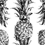 Hand drawn pineapple seamless Royalty Free Stock Photography