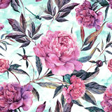 Hand drawn pink peonies bouquet seamless pattern Royalty Free Stock Photography