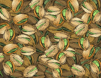 Hand Drawn Pistachios Texture Royalty Free Stock Images