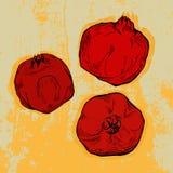 Hand drawn pomegranates on grunge background. Hand drawn pomegranates on grunge red background Royalty Free Stock Image