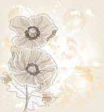 Hand drawn poppies Royalty Free Stock Photo