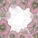 Hand drawn poppy flowers vintage frame Stock Images