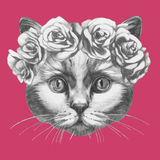 Hand drawn portrait of Cat with floral head wreath. Hand drawn portrait of Cat with floral head wreath . Vector  elements Stock Photography