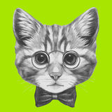 Hand drawn portrait of Cat with glasses and bow tie. Royalty Free Stock Photo