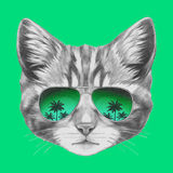 Hand drawn portrait of Cat with mirror sunglasses. Royalty Free Stock Images
