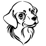Hand drawn portrait of dog labrador. Black and white Royalty Free Stock Photos