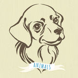 Hand drawn portrait of dog labrador Royalty Free Stock Images