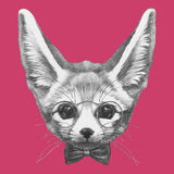 Hand drawn portrait of Fennec Fox with glasses and bow tie. Vector  elements Royalty Free Stock Photos