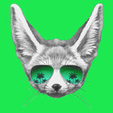Hand drawn portrait of Fennec Fox with mirror sunglasses. Vector  elements Royalty Free Stock Image