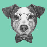 Hand drawn portrait of Jack Russell with glasses and bow tie. Stock Photo