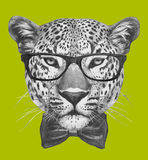 Hand drawn portrait of Leopard with glasses and bow tie. Vector  elements Stock Photos