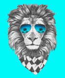 Hand drawn portrait of Lion with sunglasses and scarf. Vector isolated elements Stock Photo