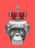 Hand drawn portrait of Monkey with crown. Vector  elements Royalty Free Stock Photography
