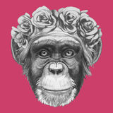 Hand drawn portrait of Monkey with floral head wreath. Vector  elements Stock Photos