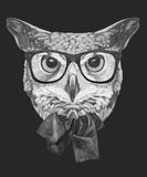Hand drawn portrait of Owl with glasses and bow. V. Ector isolated elements Royalty Free Stock Photos