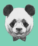 Hand drawn portrait of Panda with glasses and bow tie. Vector  elements Royalty Free Stock Photo