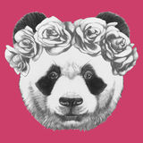 Hand drawn portrait of Panda with roses. Vector  elements Stock Images