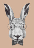 Hand drawn portrait of Rabbit with glasses and bow tie. Royalty Free Stock Photos
