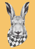 Hand drawn portrait of Rabbit with scarf. Vector  elements Stock Image