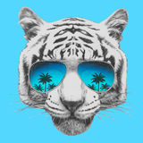 Hand drawn portrait of Tiger with mirror sunglasses. Vector isolated elements Stock Photography