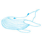 Hand drawn poster of a whale. Stock Images