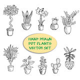 Hand drawn pot plants. Vector set stock illustration