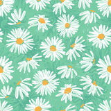 Hand drawn pretty daisies seamless pattern Stock Photos