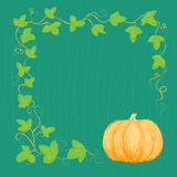 Hand drawn pumpkin and vine Royalty Free Stock Photography