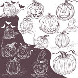 Hand drawn pumpkins Stock Photography