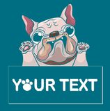 Hand drawn puppy French bulldog with place for text vector. Cartoon Happy French bulldog smile with Space for text. Stock Photo