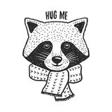 Hand drawn raccoon print. Hug me quote. Vector vintage illustration. Hand drawn raccoon print. Hug me quote. Cute design element for t-shirt, posters Stock Images