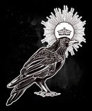 Hand drawn raven bird with crown illustration. Stock Image