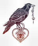 Hand drawn raven bird with heart shaped padlock. Stock Images