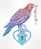 Hand drawn raven bird with heart shaped padlock. Royalty Free Stock Images