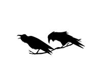 Hand drawn ravens Stock Photo