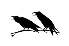 Hand drawn ravens Royalty Free Stock Image