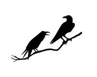 Hand drawn ravens Royalty Free Stock Photos