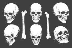 Hand drawn realistic human skulls and bones from different angles. Monochrome vector illustration on black background. Eps10 stock illustration