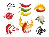 Hand Drawn Red Hot Pepper. Spicy Ingredient. Chili Logo. Spice Hot Chili Pepper Isolated On White Background. Natural Healthy Food Royalty Free Stock Image