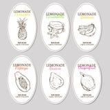 Hand Drawn Refreshing Lemonade Labels Set Stock Photography