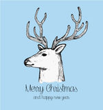 Hand drawn reindeer face holiday greeting card Stock Photos