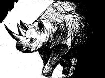 Hand drawn rhinoceros . Isolated on transparent background. anti stress Coloring Page Vector monochrome sketch. Royalty Free Stock Photography