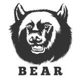 Roaring Bear Emblem. Hand drawn roaring bear. Wild angry bear head  illustration Royalty Free Stock Photos