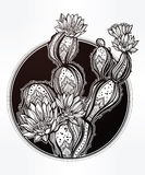 Hand drawn romantic drawing with blooming cactus. Stock Photos