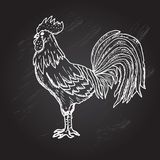 Hand drawn rooster. Elegant hand drawn decorative rooster, symbol of New Year 2017. Can be used for cards, invitations, print, gift wrap, gift paper royalty free illustration