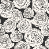 Hand drawn rose flower background. Royalty Free Stock Images