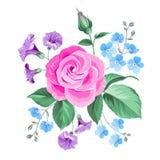 Hand drawn rose. Stock Photos