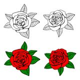 Hand drawn roses coloring page. With bright samples. Vector illustration Stock Images