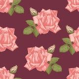 Hand drawn roses seamless Stock Image